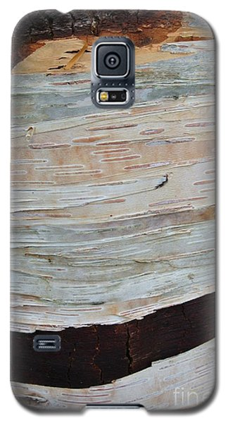 Birch Bark Galaxy S5 Case
