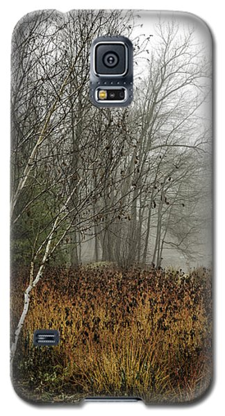 Birch In Winter Galaxy S5 Case