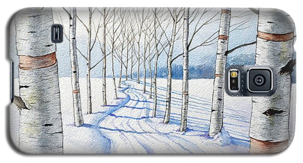 Birch Trees Along The Curvy Road Galaxy S5 Case