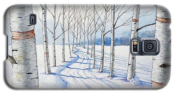 Birch Trees Along The Curvy Road Galaxy S5 Case