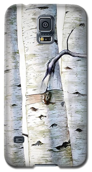 Birch Trees Galaxy S5 Case