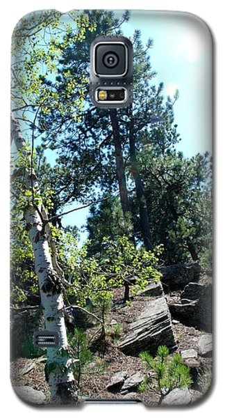 Birch Trees Galaxy S5 Case by Dany Lison