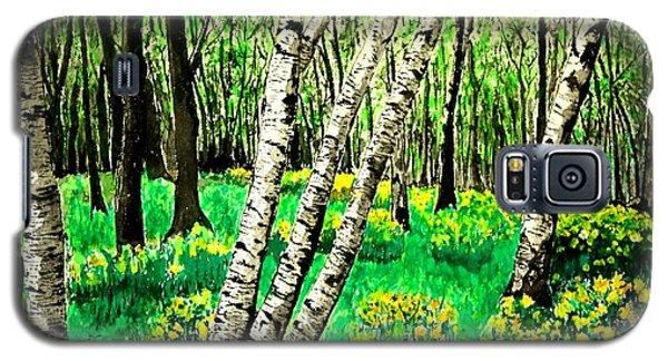 Birch Trees In Spring Galaxy S5 Case