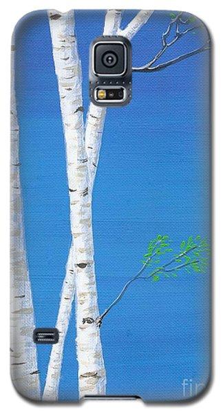 Birch Trees Galaxy S5 Case