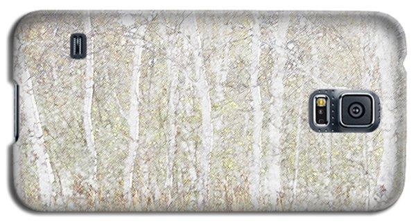 Birches In Colored Pencil Galaxy S5 Case by Susan Crossman Buscho