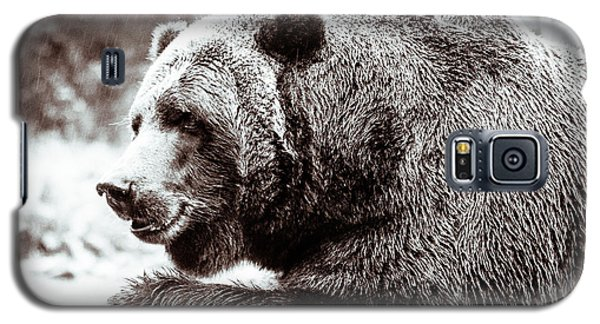 Galaxy S5 Case featuring the photograph Bird And A Bear In Black And White by Wade Brooks