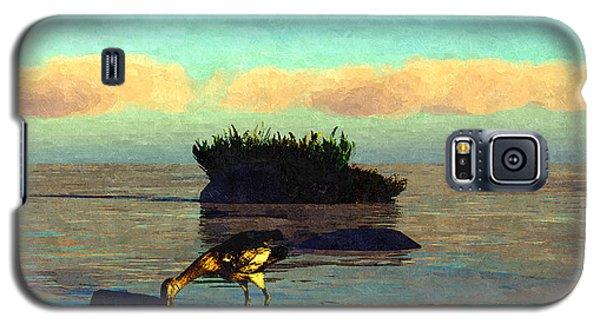 Bird And Rocks... Galaxy S5 Case