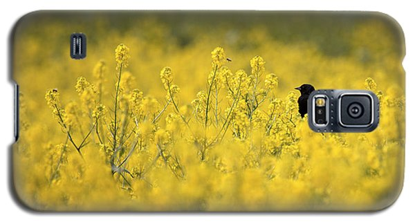 Galaxy S5 Case featuring the photograph Bird And The Bees Mg_9150 by David Orias
