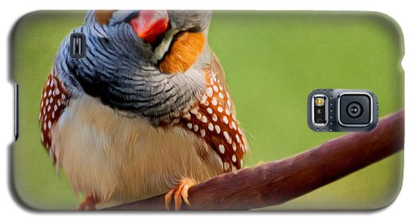 Bird Art - Change Your Opinions Galaxy S5 Case