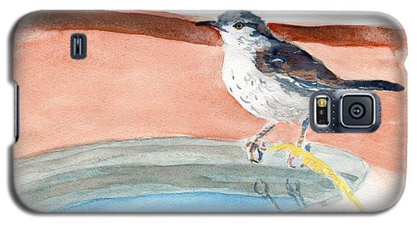 Bird Bath Galaxy S5 Case