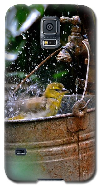 Bird Bath Galaxy S5 Case by Carol  Bradley