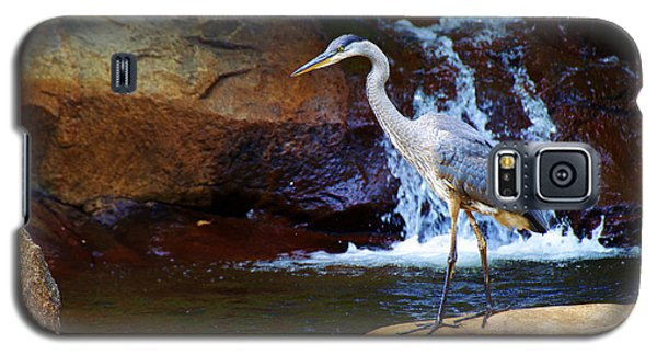 Galaxy S5 Case featuring the photograph Bird By A Waterfall  by Sarah Mullin