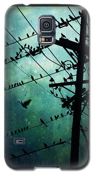 Bird City Galaxy S5 Case