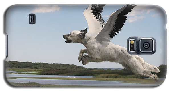 Bird Dog Galaxy S5 Case