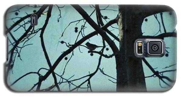 Galaxy S5 Case featuring the photograph Bird In Tree by Tara Potts