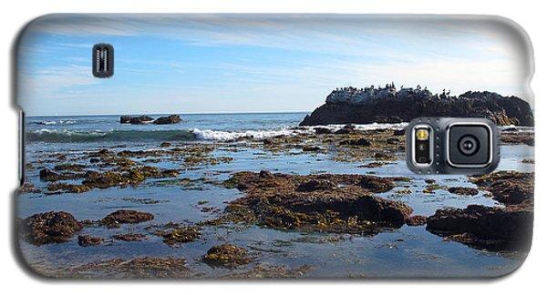 Bird Island Galaxy S5 Case