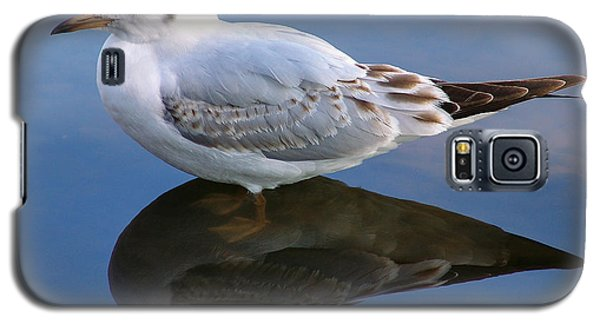 Galaxy S5 Case featuring the photograph Bird Reflections by John Swartz