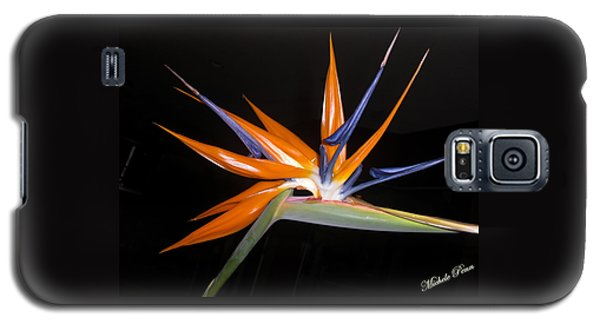 Bird Of Paradise Beauty 4 Galaxy S5 Case