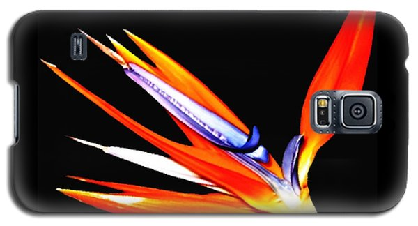 Galaxy S5 Case featuring the photograph Bird Of Paradise Flower With Oil Painting Effect by Rose Santuci-Sofranko