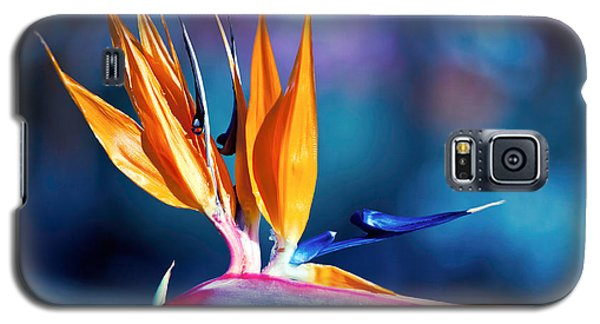 Bird Of Paradise Galaxy S5 Case by Gunter Nezhoda