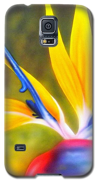Bird Of Paradise Revisited Galaxy S5 Case