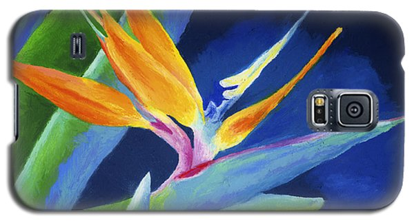 Bird Of Paradise Galaxy S5 Case by Stephen Anderson