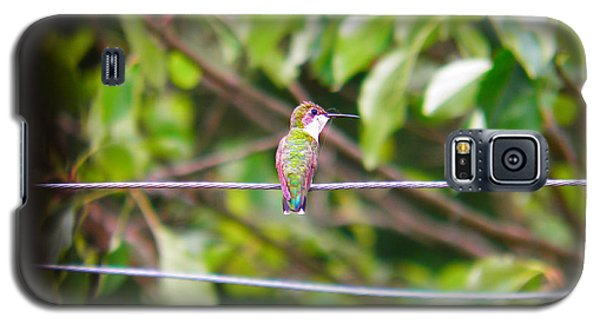 Galaxy S5 Case featuring the photograph Bird On A Wire by Nick Kirby