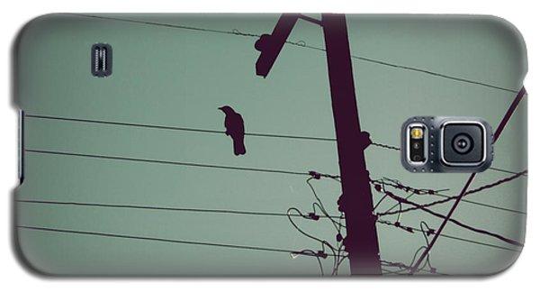 Bird On A Wire Galaxy S5 Case