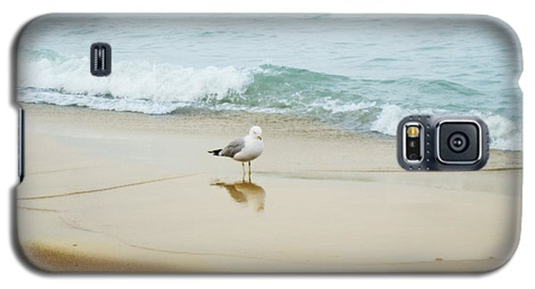 Galaxy S5 Case featuring the photograph Bird On The Beach by Milena Ilieva