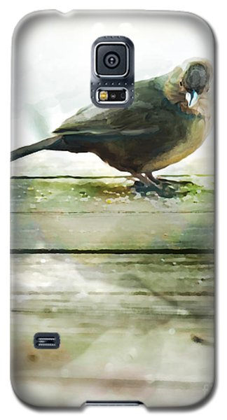 Bird On The Deck Galaxy S5 Case by Artist and Photographer Laura Wrede
