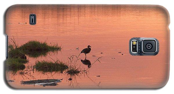 Bird Silhouette  Galaxy S5 Case