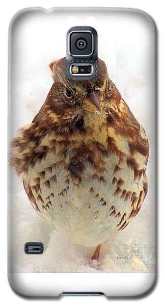 Galaxy S5 Case featuring the photograph Fox Sparrow In Snow by Janette Boyd