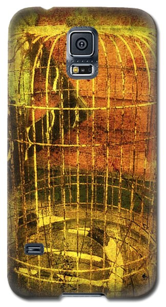 Birdcage Galaxy S5 Case by Clarity Artists