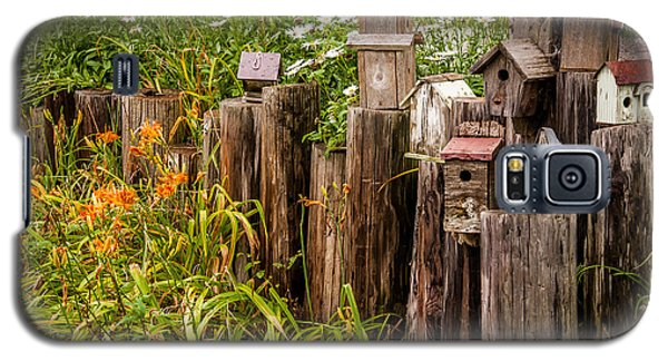 Birdhouses Beside A Country Road Galaxy S5 Case