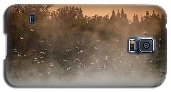 Birds And The Fog  Galaxy S5 Case
