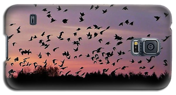 Galaxy S5 Case featuring the photograph Birds At Sunrise by Aimee L Maher Photography and Art Visit ALMGallerydotcom