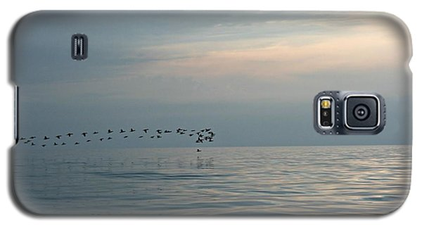 Birds At Sunset In Sister Bay Galaxy S5 Case
