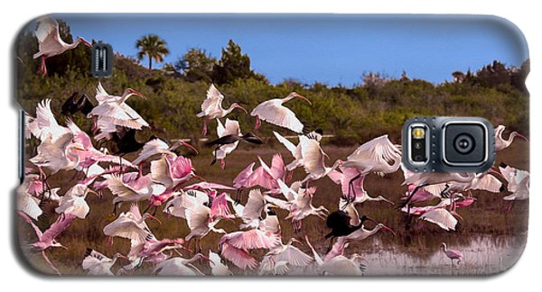 Birds Call To Flight Galaxy S5 Case