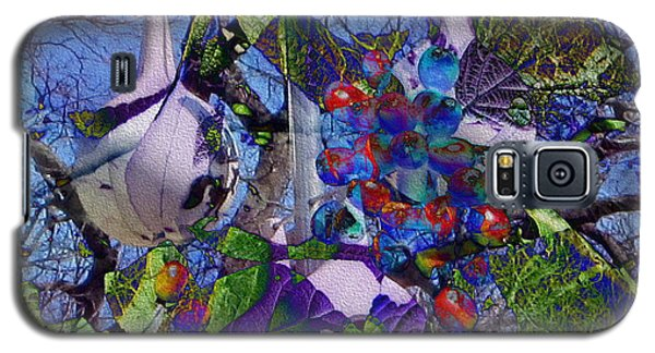 Galaxy S5 Case featuring the photograph Bird's Eye View by Kathie Chicoine