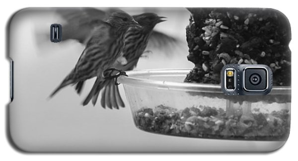 Birds Feeding Galaxy S5 Case
