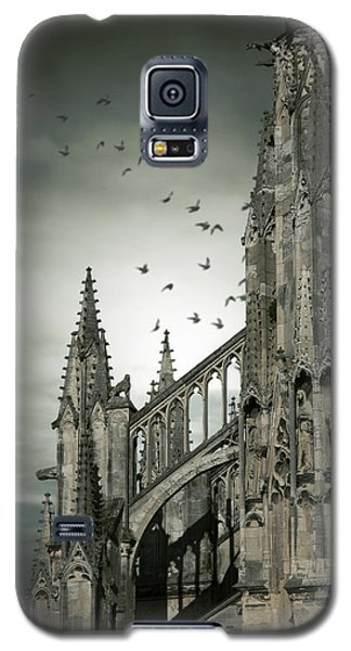 Galaxy S5 Case featuring the photograph Birds Flying Around Old Cathedral  by Ethiriel  Photography