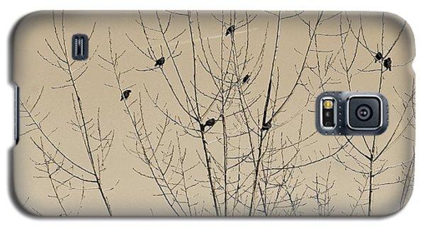 Birds Gather Galaxy S5 Case
