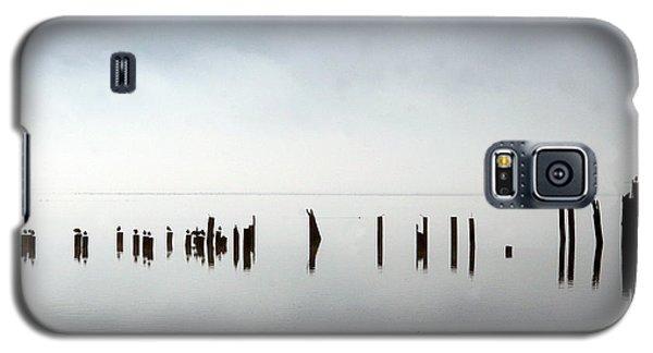 Birds In Fog Galaxy S5 Case