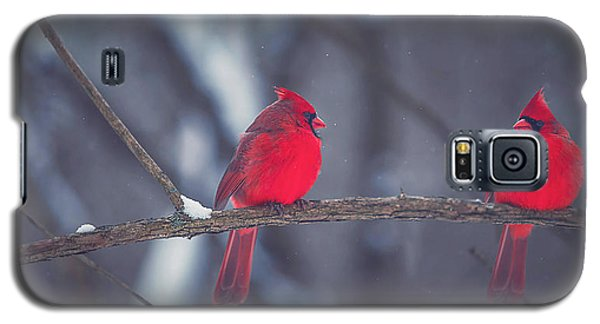 Birds Of A Feather Galaxy S5 Case by Carrie Ann Grippo-Pike