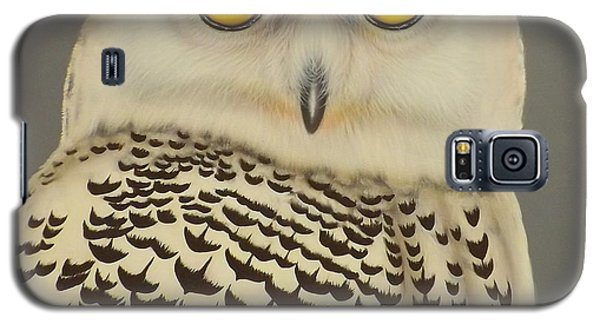 Galaxy S5 Case featuring the painting Birds Of A Feather by Darren Robinson
