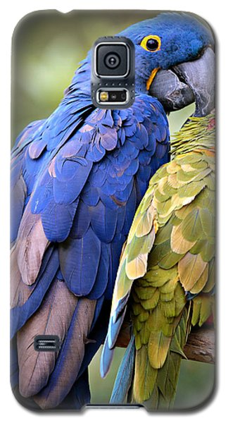 Birds Of A Feather Galaxy S5 Case by Stephen Stookey