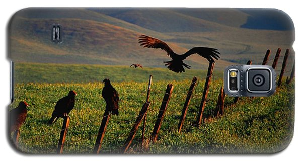 Galaxy S5 Case featuring the photograph Birds On A Fence by Matt Harang