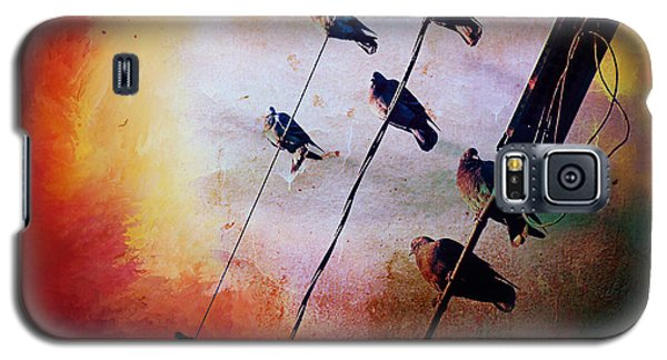 Galaxy S5 Case featuring the photograph Birds On A Wire by Micki Findlay