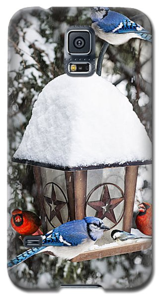 Birds On Bird Feeder In Winter Galaxy S5 Case