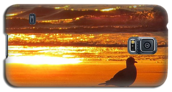 Bird's Paradise Galaxy S5 Case